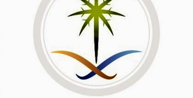 الهيئة العامة للأرصاد والبيئة